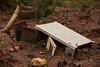 IMG_8421 (caastro) Tags: mariana minasgerais desastre barragemdofundão bentorodrigues paracatu gesteira samarco barralonga