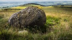 Terre de volcans (Bertrand Thifaine) Tags: puydedme roche volcan volcanique auvergne d750 nature montagne paysage prairie sauvage