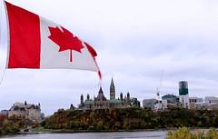 Canadian Parliament in Ottawa (Cheryne) Tags: canada ottawa flag politics parliamenthill building rideaucanal ontario