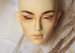 IMG_5148 (AlisonVonderland) Tags: illusion spirit tosaca illusionspirit bjd abjd male man asian custom faceup scar natural warm apricot brown normalyellow 70cm mature realistic doll