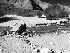 Whitewater River - Noir Portrait (Blue Rave) Tags: whitewaterpreserve nature path pathway hike hiking trail iphonephotography iphoneography 2016 river mountains bw blackandwhite california ca