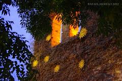 San Lorenzo (Guervós) Tags: espadaña bellgabl clochermur campanileavela atardecer tramonto sunset غروب ocaso ocàs eguzkisarrera सूर्यास्त 日落 sonnenuntergang coucherdesoleil pôrdosol úbeda ubeda jaén andalucía españa spain andalusia espagne spanien spagna 西班牙 espanya स्पेन ہسپانیہ espainia soles hiedra yedra suns