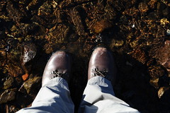 Photo of Boots in water
