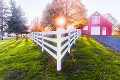 Acute Corner at Sunset (VBuckley.com) Tags: fence whitefence whitefencefarm buckleyfence fall autumn outdoor illinois chicagoland midwest sunset leaves yellowleaves pettingzoo redbarn barn sun goldenhour