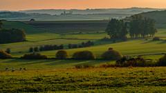 2016 10 29 - Sunset-15 (OliGlo1979) Tags: fuji luxembourg xt2 xf50140 landscape sunset horse silhouette