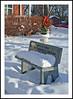 Sittting Pretty in the Snow For Your Bench Monday (sjb4photos) Tags: michigan ypsilanti washtenawcounty ypsilantihistoricalmuseum bench benchmonday hbm