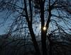 Good morning sunshine (Sappho et amicae) Tags: morning sunshine sapphoetamicae željkagavrilović canon450d