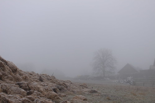 Fog around a farmhouse