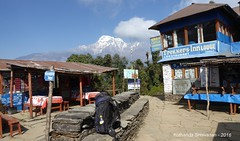 P1100994 Views of Ghandruk and Pokhara can be had from Deorali ... we rest her for some 15-20 mins (ks_bluechip) Tags: nepal trek dec2016 annapurna abc mbc landruk tolga pitamdeorali pothana