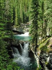 DSCN0432 (12fh) Tags: canada alberta nationalpark johnstoncanyon rockies banffnationalpark creek waterfall
