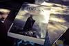 Uno más de Tolkien (spawn5555) Tags: tolkien libro books libri literatura letras nikon d3000 cotidiano lectura photography fotografía