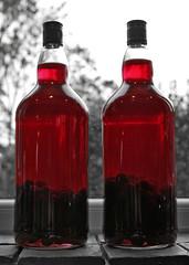 Homemade Sloe Gin (steven.kemp) Tags: slow 100v10f homemade gin