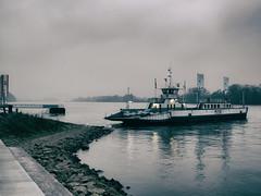 Michael (Kai-R) Tags: ferry river germany deutschland fluss rhein fhre rheinlandpfalz rhinelandpalatinate ingelheimamrhein