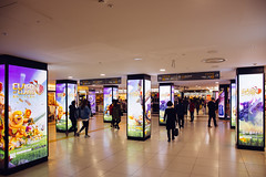 Seoul: Gangnam Station Mall (Seoul Korea) Tags: city shopping underground subway asian photo asia capital korea korean photograph seoul shoppingmall subwaystation southkorea gangnamgu gangnam 서울 한국 kpop 대한민국 republicofkorea canoneos6d flickrseoul sigma2470mmf28exdghsm