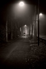 Luci nella nebbia (Cobr3tti) Tags: bw bike fog night nikon boulevard bn nebbia cuneo notte bicicletta viale d3100