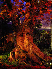 "Animatronic Autumn Tree • <a style=""font-size:0.8em;"" href=""http://www.flickr.com/photos/34843984@N07/15361032980/"" target=""_blank"">View on Flickr</a>"