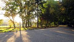 Cluj-Napoca (Iuliu Haieganu Park) (Bogdan Pop 7) Tags: park europe romania babes transylvania transilvania kolozsvar cluj clujnapoca roumanie iuliu erdly parcul erdely kolozsvr ardeal romnia klausenburg hatieganu babe haieganu