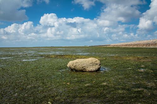 Stone Alone (3:2)