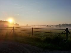 Morning at Countryside (Toni Kaarttinen) Tags: morning summer mist nature beautiful field misty fog sunrise fence suomi finland dawn countryside finnland farm country foggy finlandia  finlande finlndia finnorszg finlanda finlndia  finnishsummer finnlando