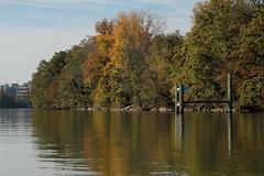 Rhein ( Hochrhein - Fluss - River ) zwischen W.ehr A.ugst - W.hylen und W.ehr B.irsfelden im Kanton Basel Landschaft in der Schweiz (chrchr_75) Tags: chriguhurnibluemailch christoph hurni schweiz suisse switzerland svizzera suissa swiss chrchr chrchr75 chrigu chriguhurni 1410 oktober 2014 albumzzzz141019rheinrheinfeldenbirsfelden hurni141019 oktober2014 rhein rhin reno rijn rhenus rhine rin strom europa albumrhein fluss river joki rivire fiume  rivier rzeka rio flod ro