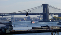 Helicopters (samsaundersleeds) Tags: nyc newyorkcity newyork brooklynbridge helicopters