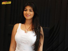 Ayesha Takia Latest Pics (16) (I Luv Cinema.IN Bollywood) Tags: gallery pics latest takia ayesha