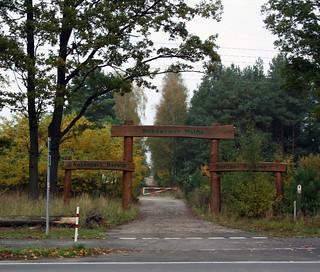 Revier Gorin Herbst 2014 Schönower Heide