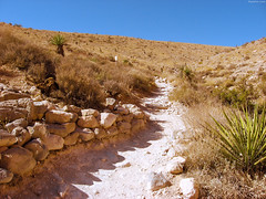 "White sandy path past cacti • <a style=""font-size:0.8em;"" href=""http://www.flickr.com/photos/34843984@N07/15546678295/"" target=""_blank"">View on Flickr</a>"