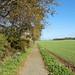 Auf dem Weg von der Wittower Fähre nach Wiek (3)