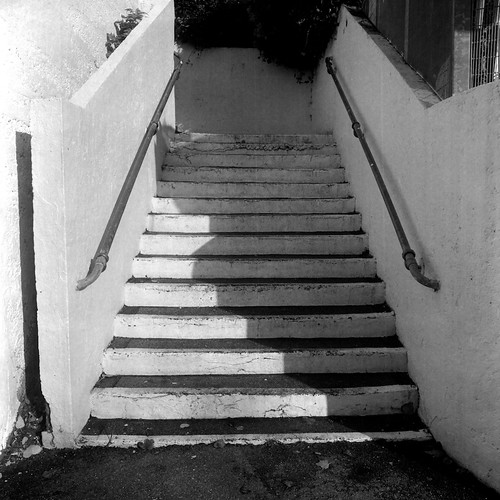 120 6x6 film zeiss mediumformat t 50mm scan negative fujisuperia400 distagon hasselblad500cm chalkwell