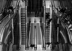 Escalotors (Eric Burgers) Tags: rotterdam markthal