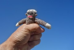 Putting the Squeeze on a Sock Monkey (ricko) Tags: toy monkey hand fingers sockmonkey squeezing mdpd2014 mdpd1410