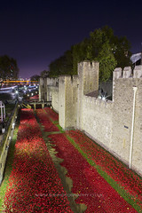 Poppies at The Tower of London to remember every one who lost their live in WW1. London at Night (iesphotography) Tags: city uk greatbritain travel bridge houses red england urban building bus london tower english history clock tourism westminster thames architecture canon vintage outdoors big exterior place ben unitedkingdom britain grunge united traditional famous capital transport culture kingdom parliament bigben landmark scene icon palace tourist retro spire national poppy poppies government historical british ww1 toweroflondon redbus poppyappeal 1dx canon1dx