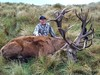 New Zealand Red Stag Hunting - Christchurch 41