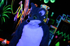 Blacklight2014-10