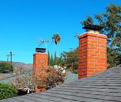 one chimney two chimney (N@ncyN@nce) Tags: california roof chimney sky house shingles bricks suburbia palmtree antenna antennae sandimas losangelescounty sangabrielvalley