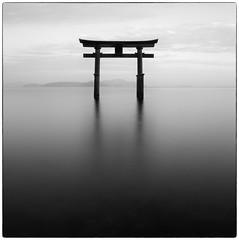 Lake Biwa #8 Shirahige Shrine (Masahiko Kuroki (a.k.a miyabean)) Tags: bw square noiretblanc explore le 琵琶湖 白鬚神社 fujixe1 fujifilmsuperebcxf2841855mm
