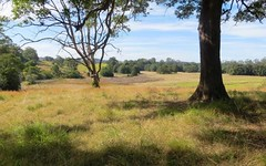 Lot 3 Rodeo Drive, Tewinga NSW