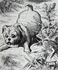 """""""A puppy almost runs Alice over."""" Art by John Tenniel for """"Alice's Adventures in Wonderland"""" by Lewis Carroll (1866). (lhboudreau) Tags: fiction dog art illustration book artwork drawing alice illustrations drawings books fantasy engraving novel pooch alicesadventuresinwonderland wonderland aliceinwonderland lewiscarroll charlesdodgson engravings hardcover 1866 fantasyart johntenniel classicnovel hardcovers charleslutwidgedodgson hardcoverbooks hardcoverbook classicstory fictionstory fictionnovel firstamericanedition firstappletonedition"""