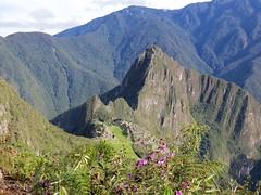 Machu Picchu-65