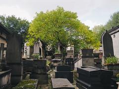 Pre Lachaise Cemetery (aridleyphotography.com) Tags: travel autumn paris france fall cemetery digital october olympus dslr perelachaise iledefrance cimetiere 2014 vsco vscofilm olympusomd olympusomdem10 perlachaisecemetery