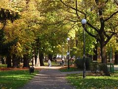 parks of d (JoannaRB2009) Tags: park city autumn trees sun fall nature path poland polska sunny lodz d lodzkie dzkie parkreymonta