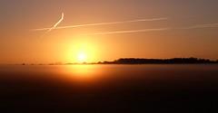 Un week-end FlickR fait d'or (Thierry.Vaye) Tags: flickr soleil or aube brume brouillard