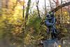 Hiawatha and Minnehaha (kristinaaahhh) Tags: autumn lensbaby minnehaha nature travel minnesota