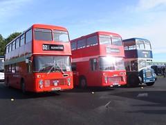 Trent Buses 801 780 Donington Showbus (Guy Arab UF) Tags: midland general 801 lra801p trent motor traction 780 yrc125m bristol vrt ecw bus donington park showbus preserved buses