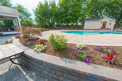 After 2016 (31) (The Sharper Cut Landscapes) Tags: belgardhardscapes patio pavers plantings paverdesign pool pavilion walkway steps seatwall retainingwall landscapedesign landscaping landscapecompany landscapelighting thesharpercutlandscapes thesharpercut