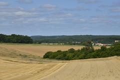 Vaste champs de foin avec un bois au milieu (Flikkersteph -4,000,000 views ,thank you!) Tags: countryside rural landscape nature summer beautiful fields clearsky champagneetfontaine prigord france