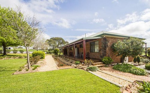 169 Square Road, Canowindra NSW 2804