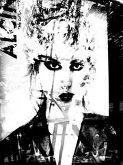 beauty reflect (joei.laut) Tags: joeilaut oktober 2016 digitalart collage blackwhite bw sw schwarzweiss woman girl advertising window