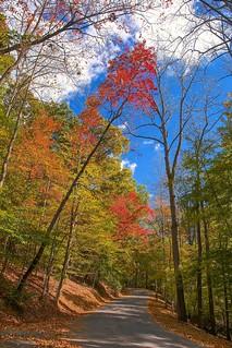 Fairy Stone State Park VA